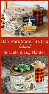 How To Make A Succulent Planter by How To Make A Succulent Log Planter Lumberjack Not Required