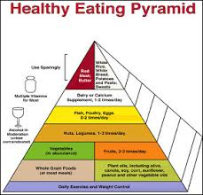 food pyramid and other guides to nutrition stew smith fitness cscs