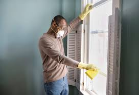 free how to detect mold in home at basement mold in long island on