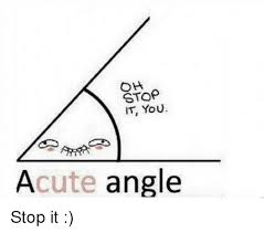 Meme Oh Stop It You - oh stop it you acute angle funny meme on awwmemes com