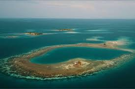 belize airbnb rent bird island in belize on airbnb for just 57pp a night and
