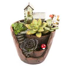 Succulent And Cacti Pictures Gallery Garden Design Zaray Store Micro Landscape Artificial Flowers Succulent Plants