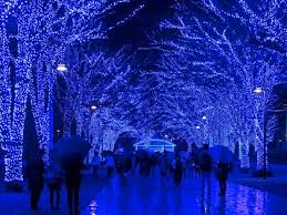 purple christmas lights where to see the world s best christmas lights condé nast traveler