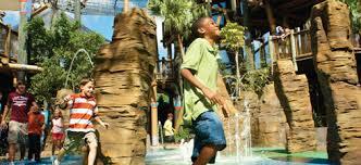 kid friendly attractions activities u0026 more busch gardens tampa bay