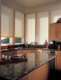 Roll Up Window Shades Home Depot by Kitchen Adorable Window Treatments Blackout Vertical Blinds The