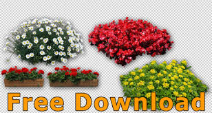 free flowers flower cutouts png free