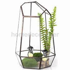 glass terrarium hexagonal fairy miniature garden house greenhouse