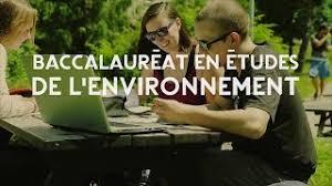bureau d udes environnement centre universitaire de formation en environnement et