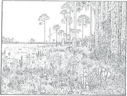 free printable coloring pages for adults landscapes free coloring pages adults usedauto club