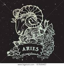 zodiac sign aries decorative frame vector u0026 photo bigstock
