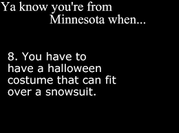 517 best minnesota hail to thee images on pinterest twin cities