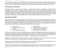 resume summary statement consultant resume how to write a resume skills section awesome self