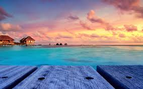 tropical beach nature sunset landscape bungalow maldives