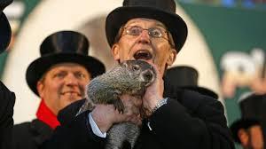 groundhog 2014 punxsutawney phil sees shadow