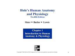 Anatomy And Physiology Chapter 1 Review Answers Chapter 1 Introduction To Human Anatomy And Physiology