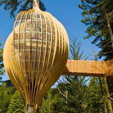 a air balloon inspired tree house tree houses