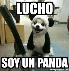 meme personalizado lucho soy un panda 1351522