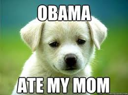 Obama Dog Meme - dogs against obama blasts president in new youtube ad business insider