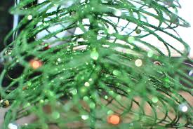 christmas 2016 beyond cinderella