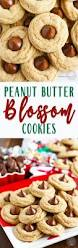 these classic peanut butter blossom cookies are a traditional