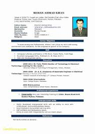 awesome resume template resume template using word 2010 fresh awesome resume templates for