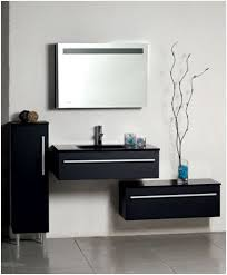 bathroom storage mirrored cabinet bathroom storage mirrored cabinet elegantly doc seek