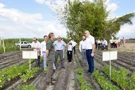 breeding better crops ciat
