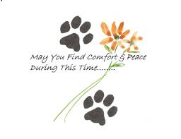pet sympathy free sympathy condolences ecards greeting cards