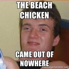Sandwich Meme - seagull a seagull took his sandwich meme guy