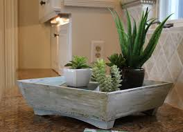 whitewashed wooden tray filled with indoor succulent planters for