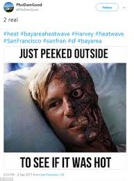 Appropriate Memes - residents san francisco heat wave create hilarious memes daily
