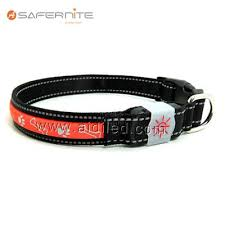 Best Illuminated Dog Collar Dog Collars And Leads Best Illuminated