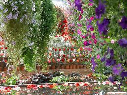 garden design garden design with flower garden on pinterest