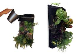 the farm buddy makes it easy to grow your own large living walls