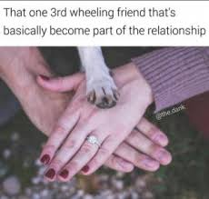 3rd Wheel Meme - third wheel jokes kappit