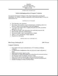 information technology professional resume information technology resume examples 2012 cheap dissertation