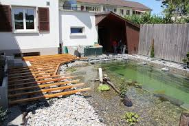 Backyard Swimming Ponds - man builds beautiful natural pool in family u0027s backyard