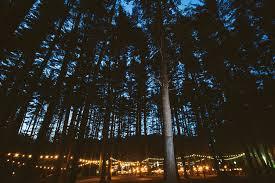rustic wedding venues pa pine forest c poconos wedding venue