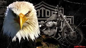 hd harley davidson wallpaper png 1920 1080 pictures