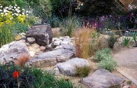 rock garden with drought tolerant plants large stones plant