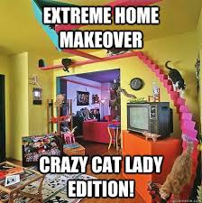 Crazy Cat Lady Memes - extreme home makeover crazy cat lady edition ehm crazy cat lady
