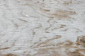White Texture Background Another Free Textures Background Photo Of Rough White Painted Wood