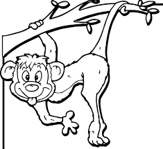 affe bild zoo coloring wecoloringpage