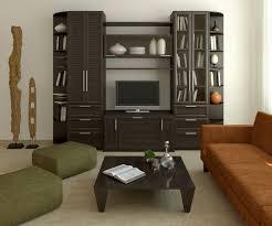 living tv unit designs in hall