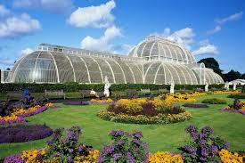 Botanic Gardens Uk Kew Gardens Killed By Falling Tree Branch At Royal