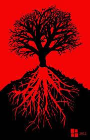 root chakra 77 best 1 muladhara chakra root images on pinterest muladhara