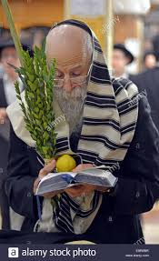 prayers for sukkot religious praying with an esrog and lulv during the