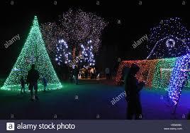 hudson gardens christmas lights christmas displays at hudson gardens littleton co stock photo