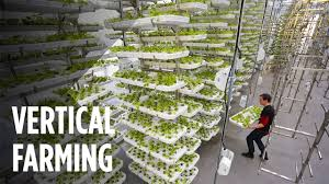 This Farm Of The Future Uses No Soil And 95 Less Water Youtube