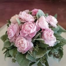 peonies flower delivery peonies flower delivery in vista tri city florist